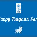 Happy Tsagaan Sar!