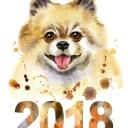kartinka-simvol-2018-16